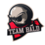 Team Bald Reborn - logo